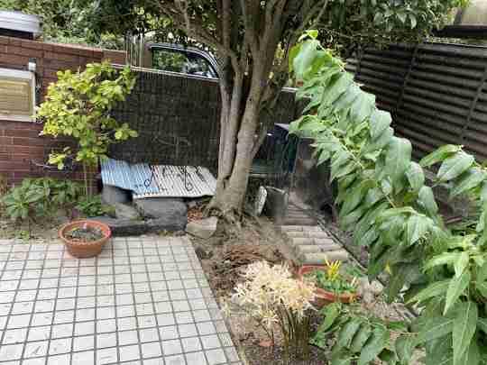大阪府宝塚市で草刈り・庭木の剪定のご依頼